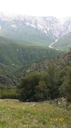 Hotel Nettuno : mountant view close to Cala Ganone
