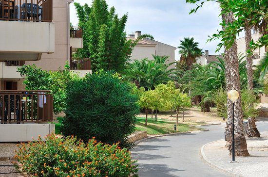 Albir Garden Resort: apartment`s blocks
