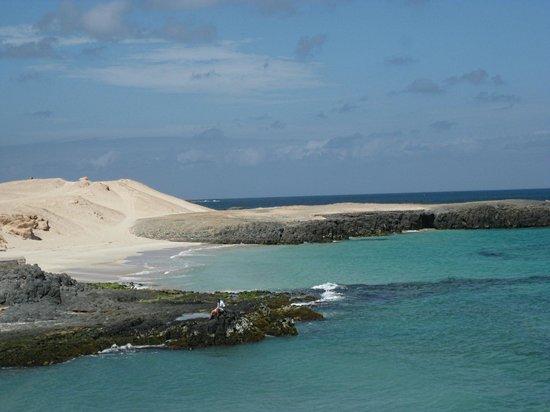Marine Club Beach Resort: spiaggia accanto hotel