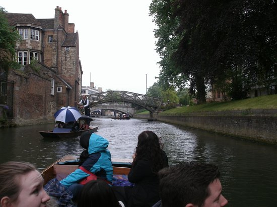 The River Cam : River Cam