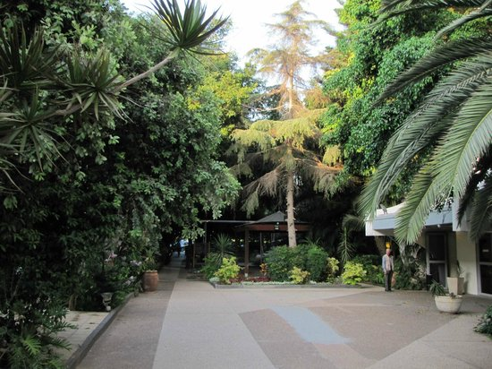 Kfar Maccabiah Hotel & Suites: Hotel grounds