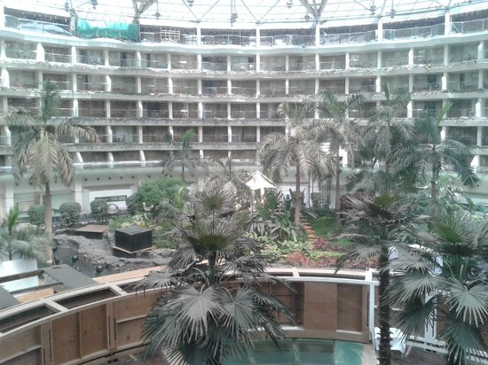 Sahara Star Hotel: view in the day time from main lift
