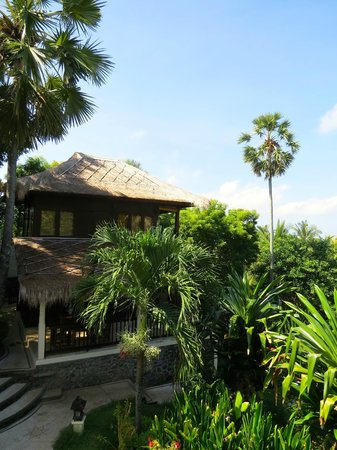 Villa Flow: the Coconut house
