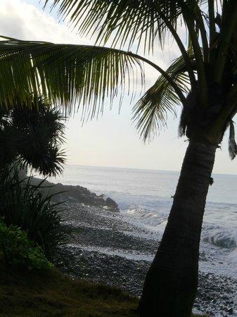 Villa Flow : private beach