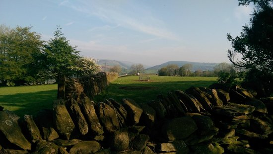 Llechwen Hall Hotel: Enjoying the view from the grounds first thing in the morning when I took the dogs out.