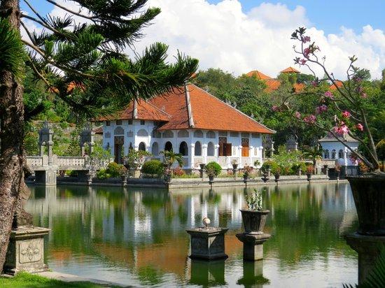 Villa Flow: waterpalace