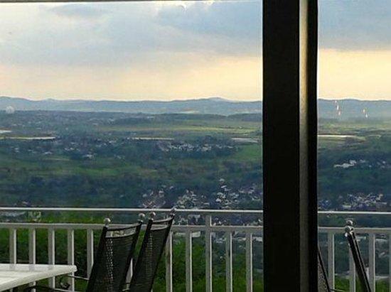 Steigenberger Grandhotel Petersberg: Blick aus dem Restaurant