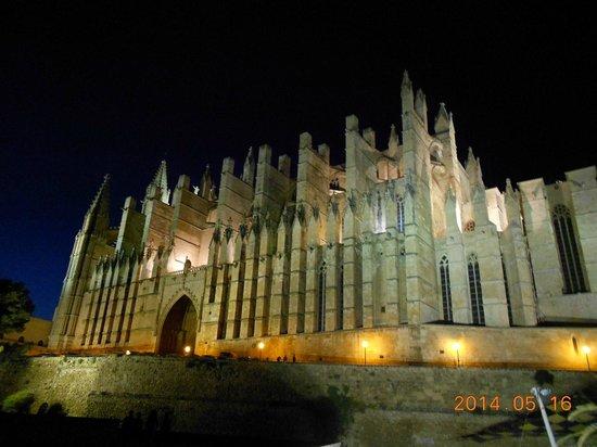 Catedral de Mallorca: Cathedral (Le Seu) at night