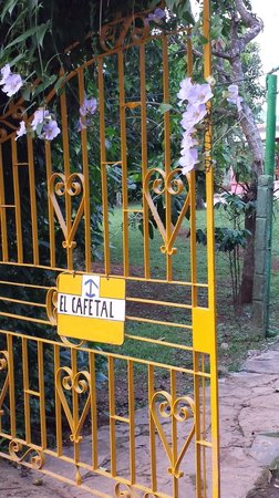 Villa El Cafetal: Entrance