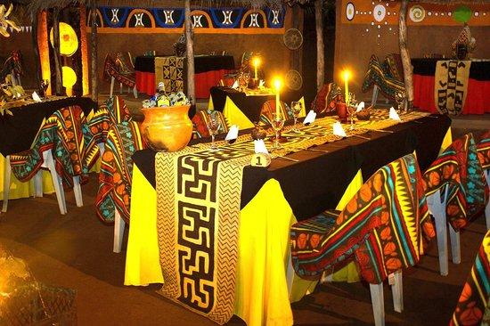 Elephant Oasis Bush Dinners