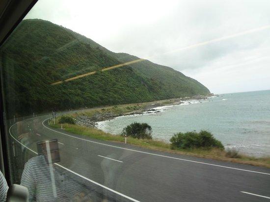 Bella Vista Motel Kaikoura: on train to Kaikoura