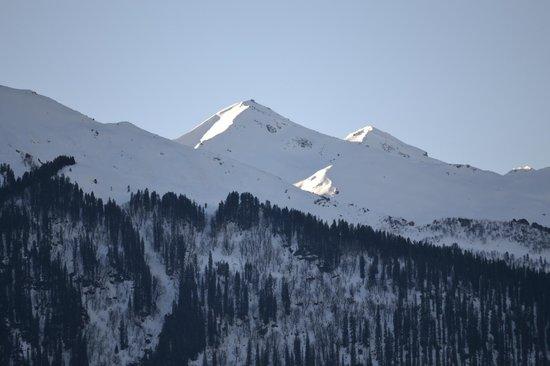 The Himalayan: view