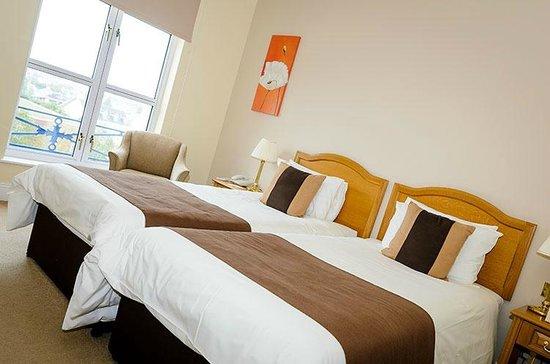 Hotel de France: Twin Room