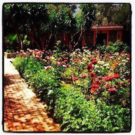 Domaine de la Roseraie : Gardens