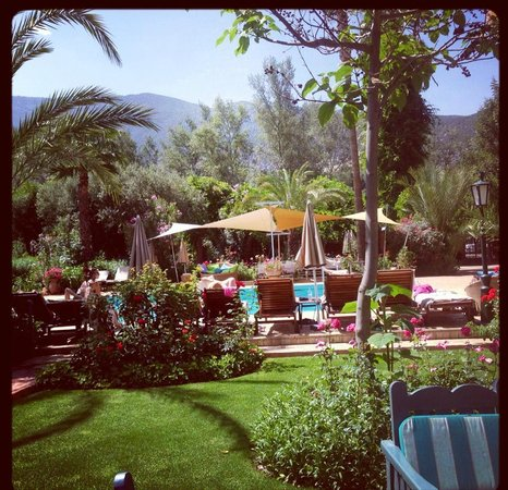 Domaine de la Roseraie: Poolside with Atlas Mountains