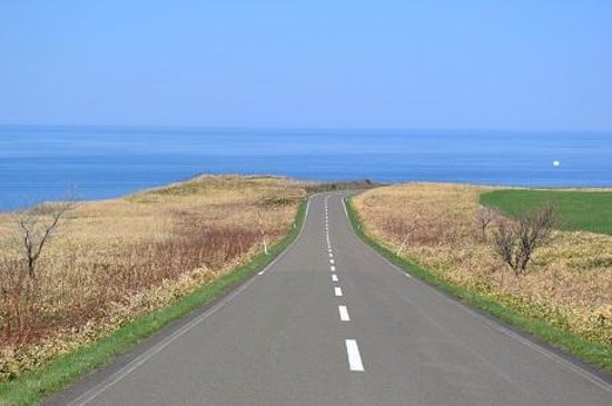 Cape Notoro : 岬に向かう直線道路
