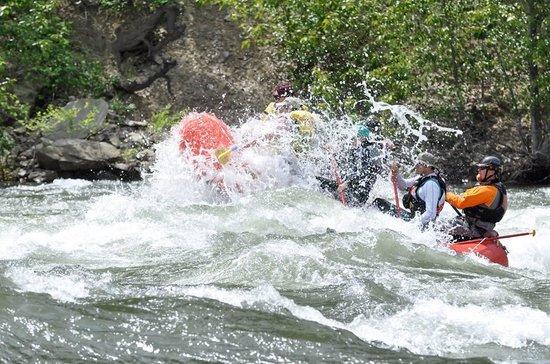 Osprey Rafting: Fun!