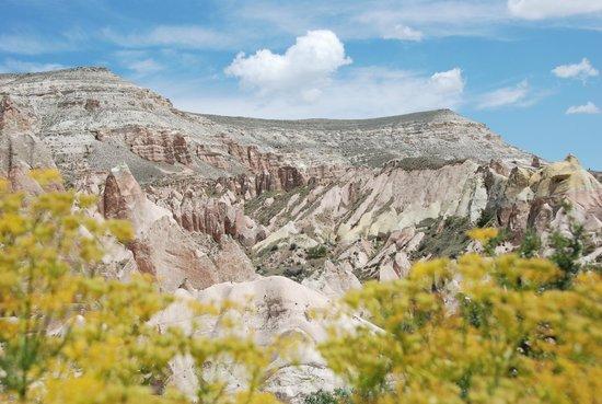 Red Valley V