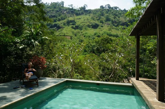 The Weir House : Swimming pool with amazing view