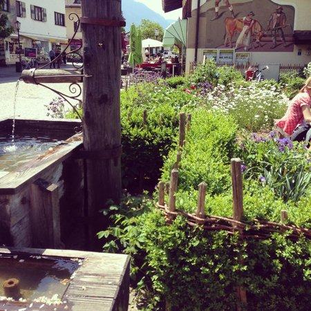 Mohrenplatz Wirtshaus & Schmankerlmarkt: Entry garden.