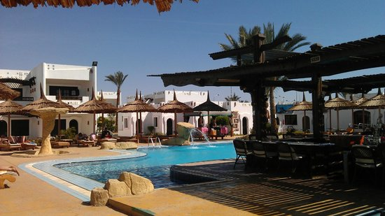 Tivoli Hotel : Территория с пальмами - куда ж без них)