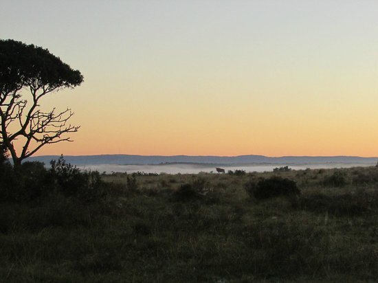 Kariega Game Reserve - Main Lodge: Sunrise