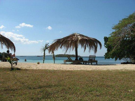 Half Moon Beach: Paradise Found