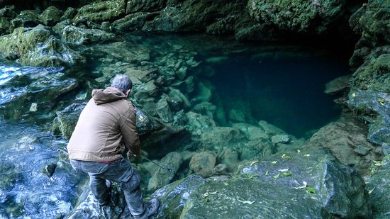 Kahurangi National Park, Neuseeland: Crystal clear water emerges from the deep cavern in rock wall