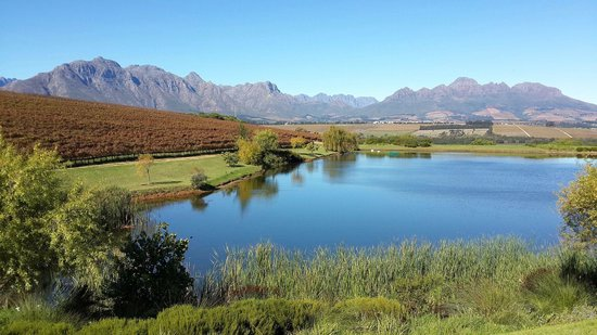 Asara Wine Estate & Hotel : View from the restaurant