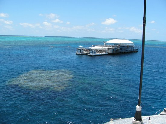 Quicksilver Cruises: THE PONTOON AT THE REEF