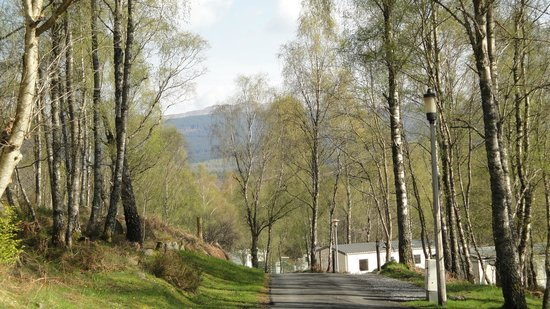 Parkdean - Tummel Valley Holiday Park: View from caravan
