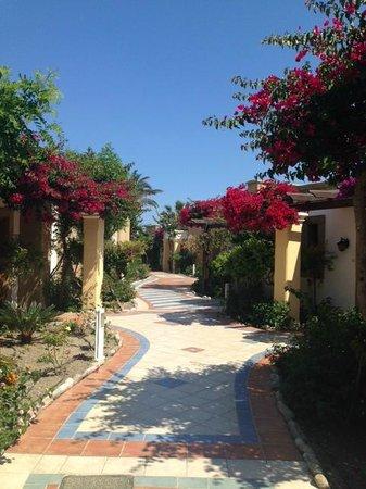 Atrium Palace Thalasso Spa Resort & Villas : Private Villas