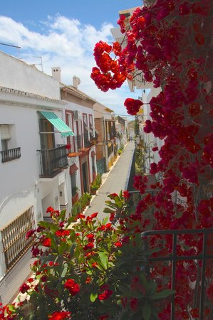 La Villa Marbella - Charming Hotel: Balcony with red bougainvillaeas