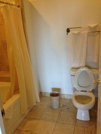 The Palms Cliff House Inn : Bathroom