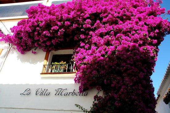 La Villa Marbella : Flowering bougainvillaea by the reception