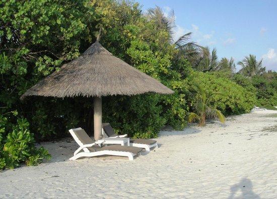Sheraton Maldives Full Moon Resort & Spa: Perfect spot to soak in some sun