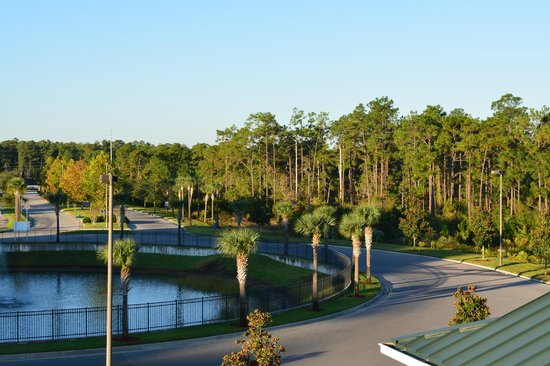 Lake Buena Vista Resort Village & Spa: gorgeous views