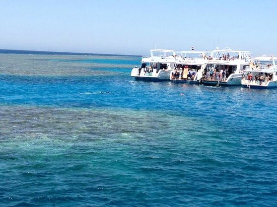 Mosaique Hotel : Red Sea