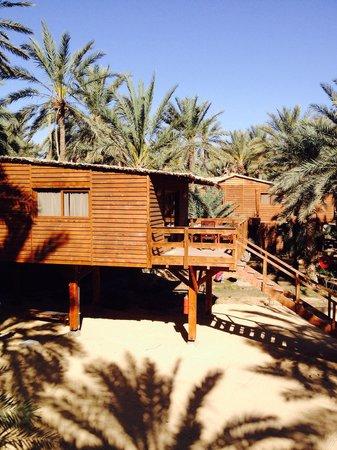Diar Abou Habibi : La vista dal Nostro Lodge
