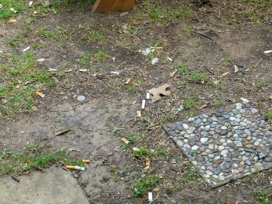 Grandpappy Point : Cigarette butts vor der Cabin