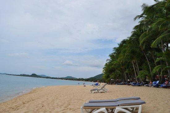 Santiburi Beach Resort & Spa: spiaggia