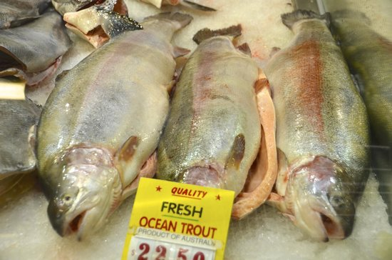 Queen Victoria Market : Ocean fresh
