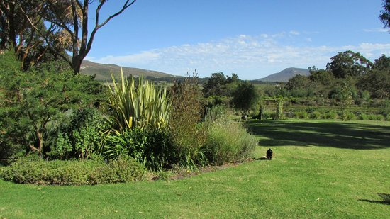 Moggs Country Cookhouse: View of countryside bliss