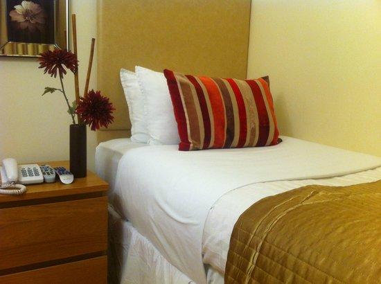 ABC Hyde Park Hotel: Single Room