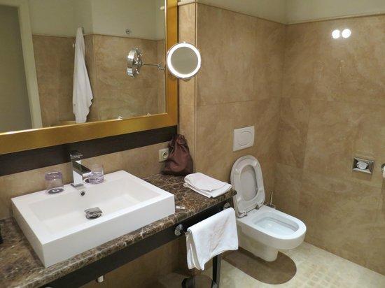 Hotel Grandezza : The bathroom