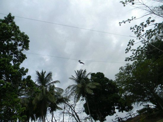 Macqueripe Bay: Myself Zip Lining, not sure how my friend got this photo..But It was  Extreme Fun