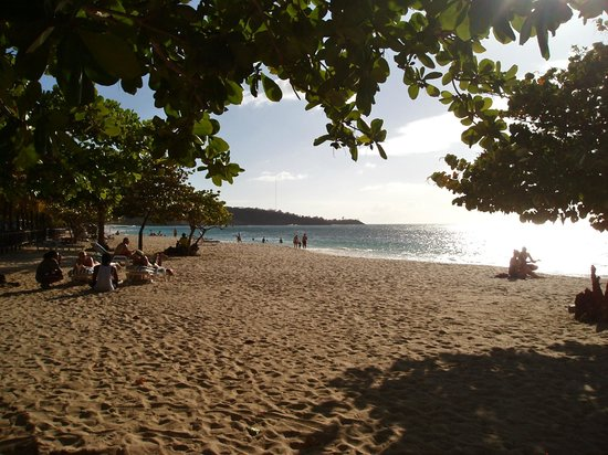 Coyaba Beach Resort : Grand Anse beach from the Coyaba