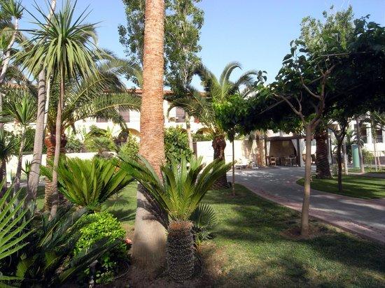 Minos Mare Royal: Le jardin