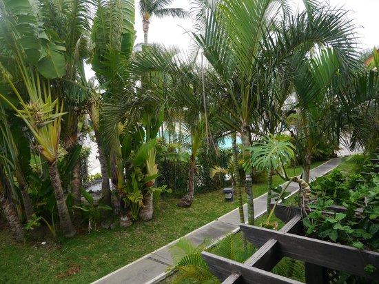 Résidence l'Archipel : Intérieur parc