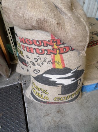 Mountain Thunder : Smell the coffee